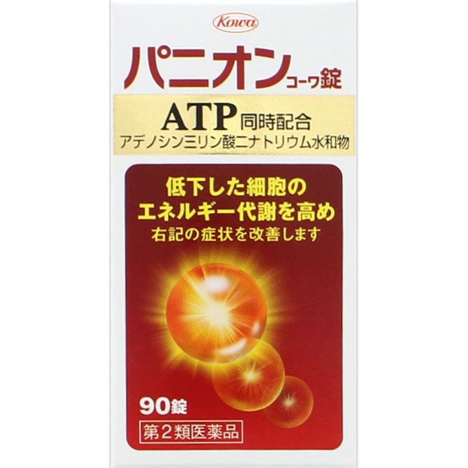 【第2類医薬品】<br>[興和]<br>パニオンコーワ錠 90錠
