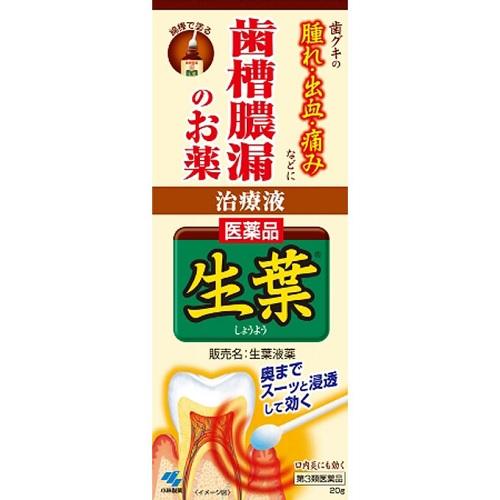 【第3類医薬品】<br>[小林製薬]<br>生葉液薬 20g